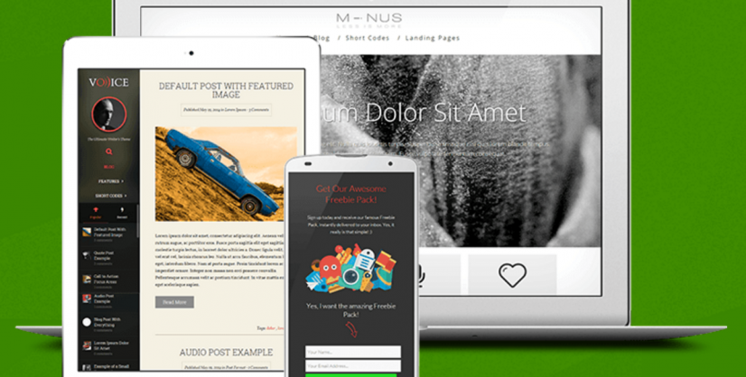 WordPress Themes: Make your Site Look Great!