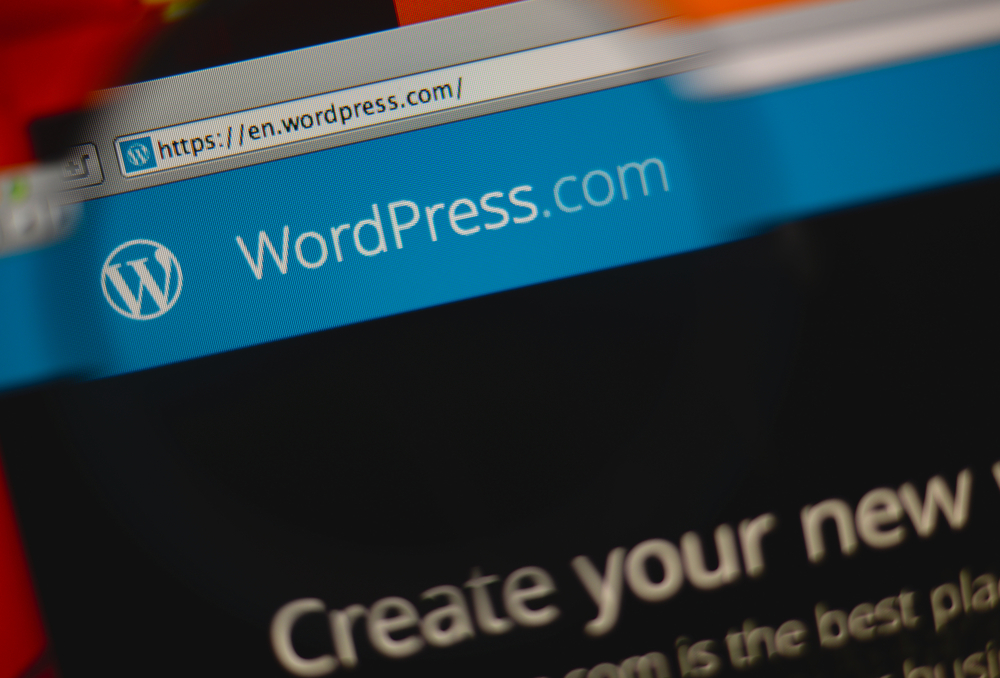 WordPress make a website